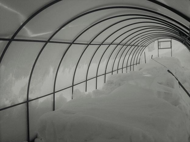 Как подготовить теплицу из поликарбоната к зиме